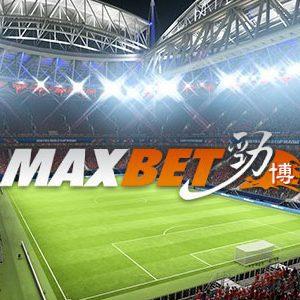 แทงบอล maxbet